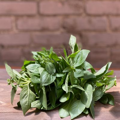 Basil Fresh Herb